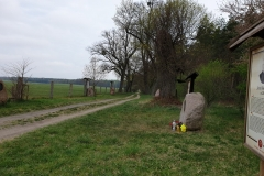 baldy-wrota-warmii-25