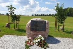 pola-grunwaldzkie-04