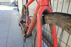 jade-na-rowerze-01