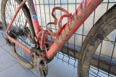 jade-na-rowerze-05