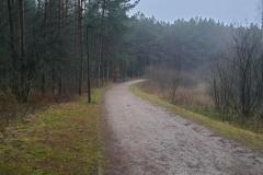Olsztyn - Gietrzwałd