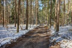 Droga od strony ul. Poziomkowej w kierunku jeziora Tyrsko
