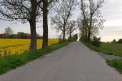 trasa-olsztyn-biskupiec-28