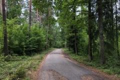 droga na Swaderki